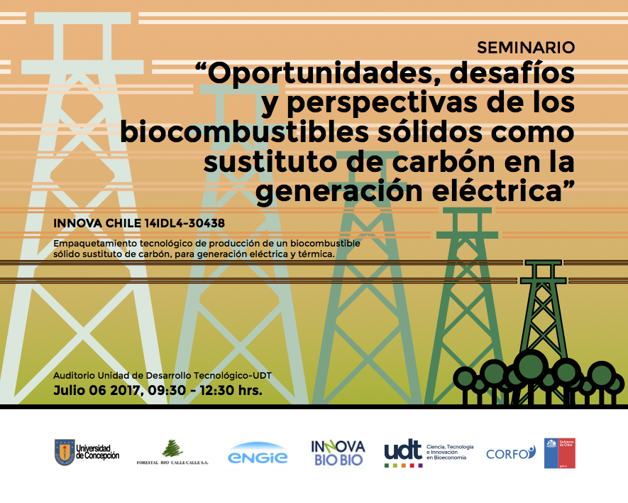 Flyer biocombustible sustituto3.1