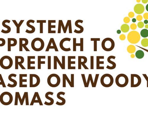 Charla de experto sobre enfoque sistémico de procesos basados en biomasa forestal