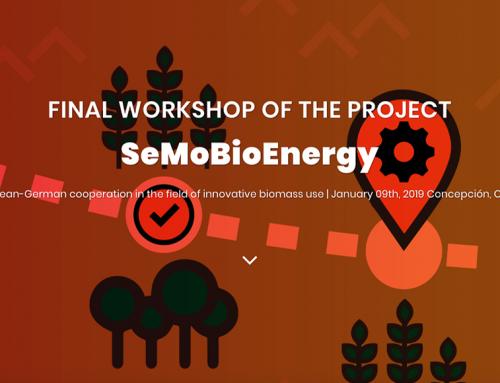 """Taller final del proyecto """"SeMoBioEnergy"""": uso innovador de la biomasa"""